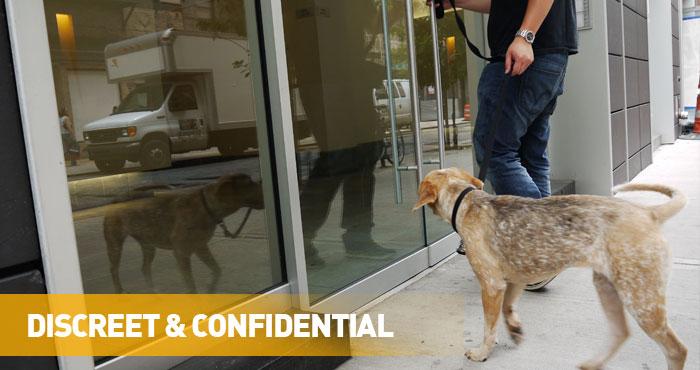 Discreet & Confidential